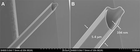 The scanning-electron image of a Potassium