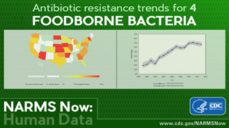 National Antimicrobial Resistance Monitoring System for Enteric Bacteria (NARMS)